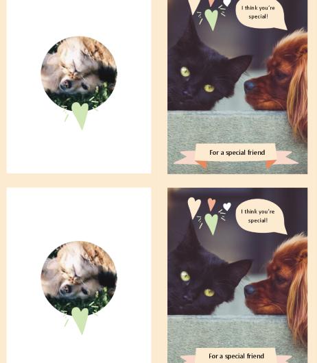 Kitten Puppy Everyday Card